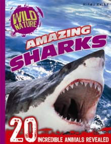 Wild Nature: Amazing Sharks, Paperback Book