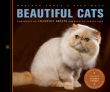 Beautiful Cats : Portraits of Champion Breeds Preened to Perfection, Paperback Book