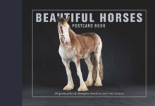 Beautiful Horses Postcard Book : 30 Postcards of Champion Breeds to Keep or to Send, Postcard book or pack Book