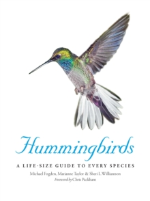Hummingbirds : A Life-Size Guide to Every Species, Hardback Book