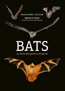 Bats : An illustrated guide to all species, Hardback Book