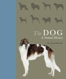 The Dog : A natural history, Hardback Book