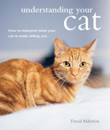 Understanding Your Cat : How to Interpret What Your Cat is Really Telling You, Paperback Book