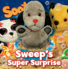 Sweep's Super Surprise, Hardback Book