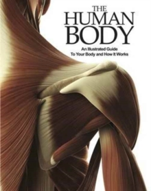 The Human Body : An Illustrated Guide to Your Body and How it Works, Paperback Book