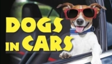Dogs in Cars, Hardback Book
