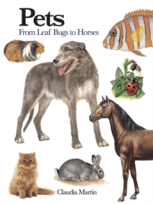Pets : 300 Small Animals, Paperback / softback Book