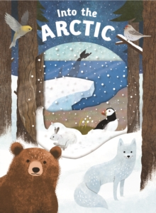Into the Arctic : Look Closer, Board book Book
