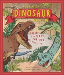 A Day at the Dinosaur Museum, Hardback Book