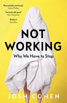 Not Working : Why We Have to Stop, Paperback / softback Book