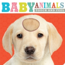Baby Animals : Touch and Feel, Board book Book