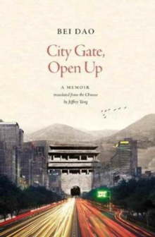 City Gate, Open Up, Paperback Book
