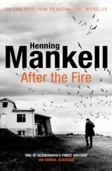 After the Fire, Paperback / softback Book