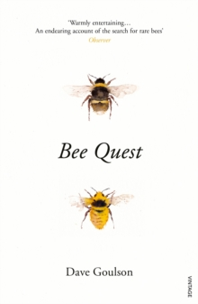 Bee Quest, Paperback / softback Book