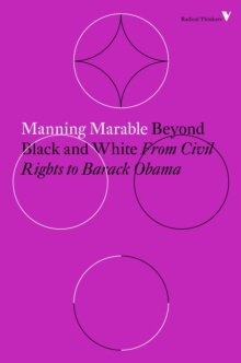 Beyond Black and White : Rethinking Race in American Politics and Society, Paperback / softback Book