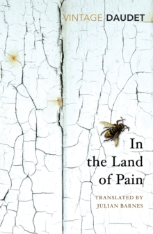 In the Land of Pain, Paperback Book