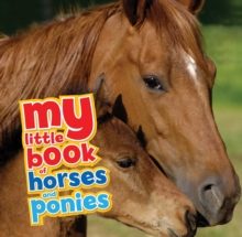 My Little Book of Horses and Ponies, Hardback Book