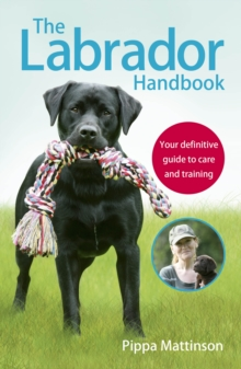 The Labrador Handbook : The definitive guide to training and caring for your Labrador, Paperback / softback Book