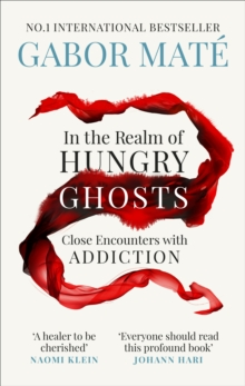 In the Realm of Hungry Ghosts : Close Encounters with Addiction, Paperback / softback Book
