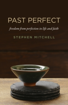 Past Perfect : freedom from perfection in life and faith, EPUB eBook