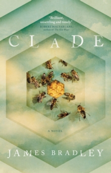 Clade, Paperback Book