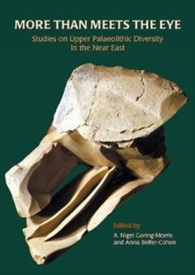 More than Meets the Eye : Studies on Upper Palaeolithic Diversity in the Near East, Paperback Book