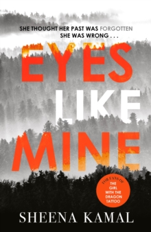 Eyes Like Mine : 'Utterly compelling . . . Will stay with you for a long, long time' Jeffery Deaver, Hardback Book