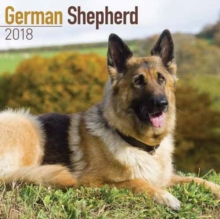 German Shepherd Calendar 2018, Paperback Book