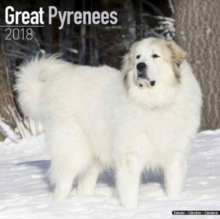 Great Pyrenees Calendar 2018, Paperback Book