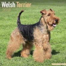 Welsh Terrier Calendar 2018, Calendar Book