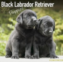 Black Labrador Retriever Puppies Calendar 2018, Calendar Book