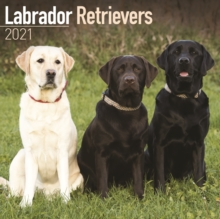 Labrador Retrievers 2021 Wall Calendar, Calendar Book