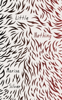 Little Nothing, Hardback Book