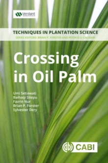 Crossing in Oil Palm : A Manual, Paperback / softback Book
