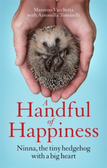 A Handful of Happiness : Ninna, the tiny hedgehog with a big heart, Hardback Book