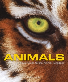 Animals : A Visual Guide to the Animal Kingdom, Hardback Book