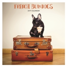 French Bulldog W 2019, Paperback Book