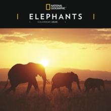 ELEPHANTS NAT GEO W 2020,  Book
