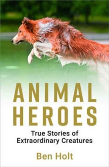 Animal Heroes : True Stories of Extraordinary Creatures, Paperback Book
