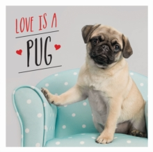 Love is a Pug : A Pugtastic Celebration of The World's Cutest Dogs, Hardback Book