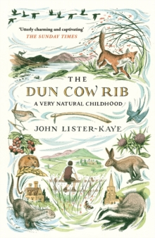 The Dun Cow Rib : A Very Natural Childhood, Paperback Book