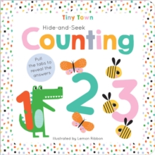 Hide-and-Seek Counting, Hardback Book