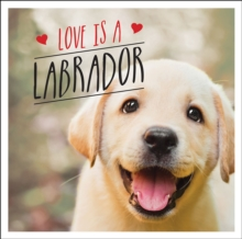 Love is a Labrador : A Lab-Tastic Celebration of the World's Favourite Dog, PDF eBook