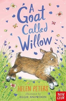 A Goat Called Willow, Paperback / softback Book