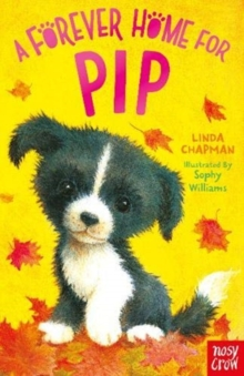 A Forever Home for Pip, Paperback / softback Book