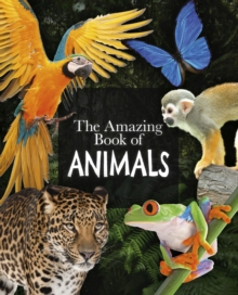 The Amazing Book of Animals, Paperback / softback Book