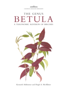 Botanical Magazine Monograph: The Genus Betula : A Taxonomic Revision of Birches, Hardback Book