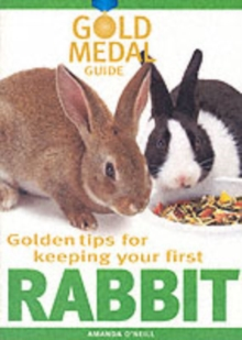 Rabbit, Paperback / softback Book