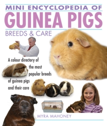 Mini Encyclopedia of Guinea Pigs Breeds and Care, Paperback / softback Book