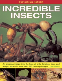Exploring Nature: Incredible Insects : An Amazing Insight into the Lives of Ants, Termites, Bees and Wasps, Shown in More Than 220 Close-up Images, Hardback Book